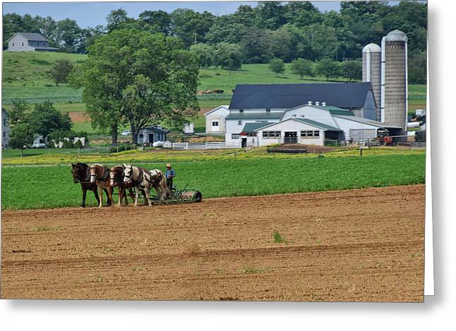 Working The Fields Greeting Card by Tricia Marchlik