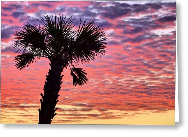 World Famous Panama City Beach Greeting Card by JC Findley