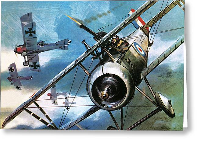 World War One Dogfight Greeting Card by Wilf Hardy