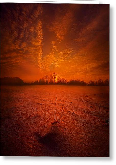World Without End Greeting Card by Phil Koch