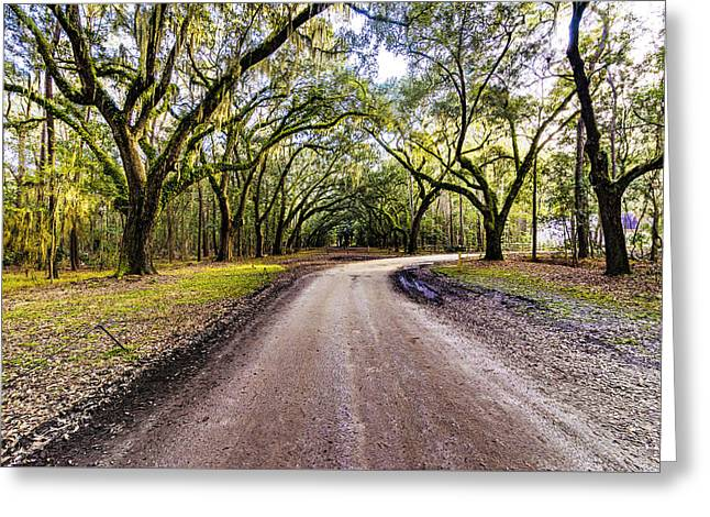 Greeting Card featuring the photograph Wormsloe Road by Anthony Baatz