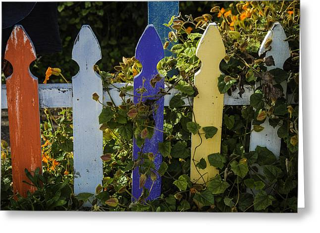 Worn Colored Fence Greeting Card by Garry Gay