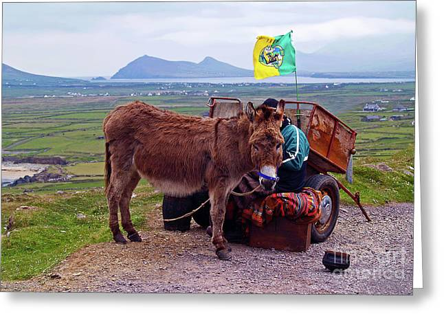 Would You Like A Ride In Ireland Greeting Card