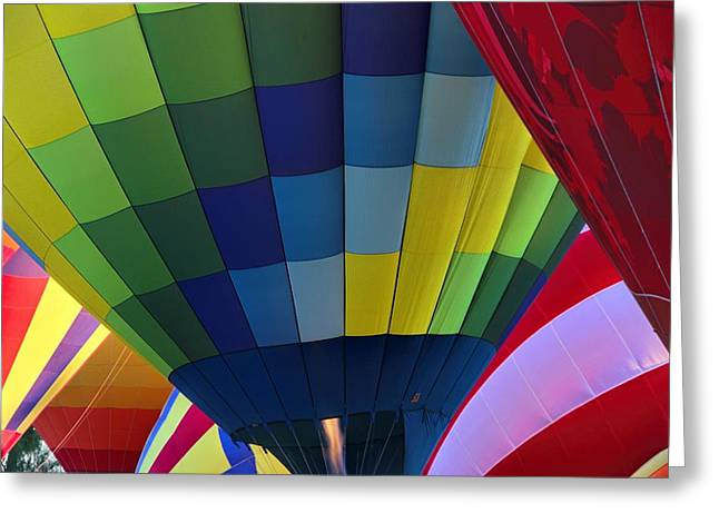 Wouldn't You Like To Fly Greeting Card by Tammy Espino