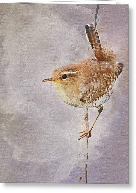 Wren Sitting On A Branch Greeting Card by Art By Jeronimo