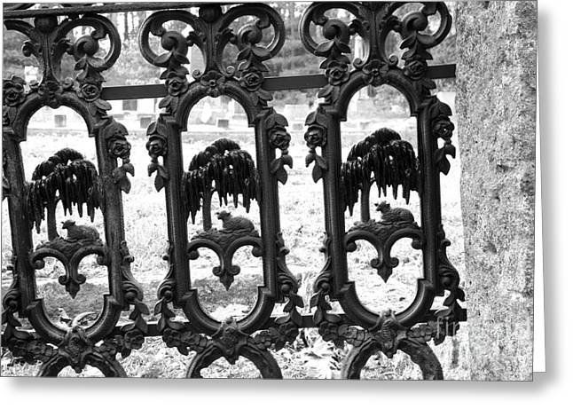 Wrought Iron Gate -west Epping Nh Usa Greeting Card by Erin Paul Donovan