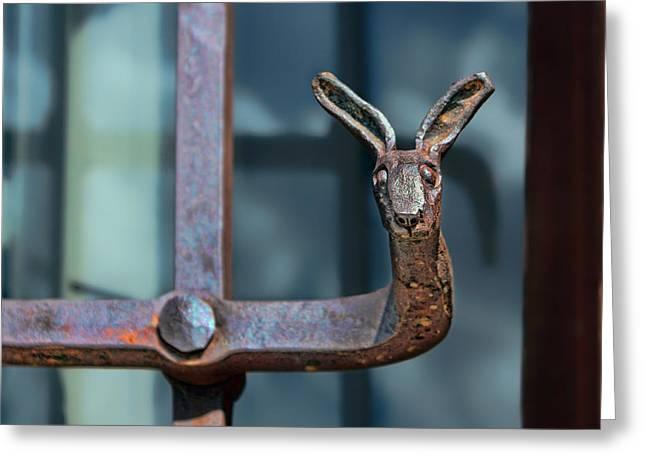 Wrought Iron - Jackrabbit Greeting Card by Nikolyn McDonald