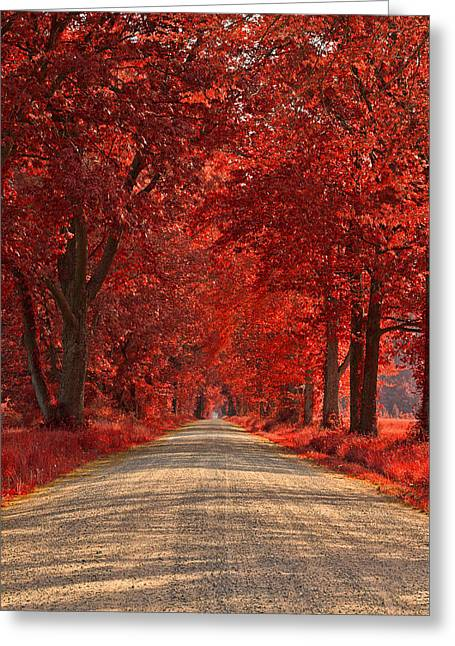 Wye Island Ruby Road Greeting Card