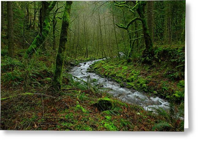 Wyeth Creek In Early Spring Greeting Card