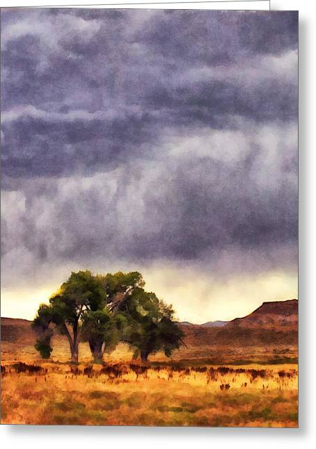 Wyoming Summer Storm Greeting Card by Janet White