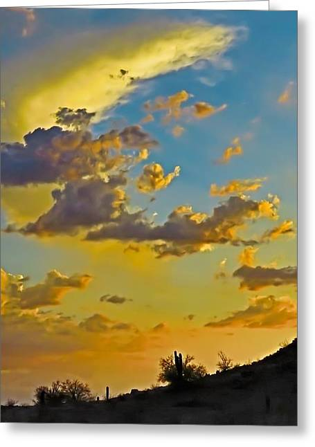 Y Cactus Sunset 10 Greeting Card