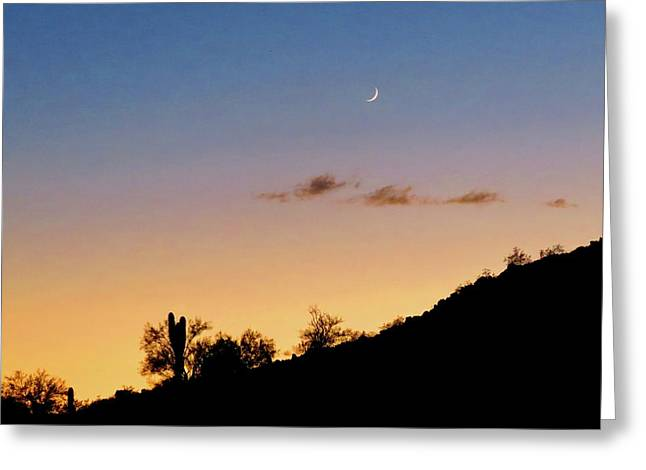 Y Cactus Sunset Moonrise Greeting Card