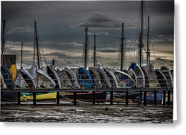 Yacht Club Greeting Card by Martin Newman