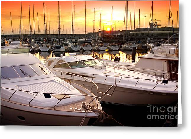 Yellow Sailboats Greeting Cards - Yacht Marina Greeting Card by Carlos Caetano