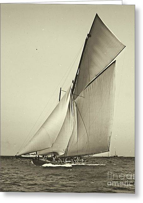 Yacht Shamrock Racing Americas Cup 1899 Greeting Card by Padre Art