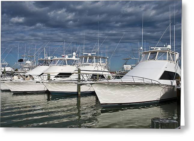 Yachts At The Dock Greeting Card