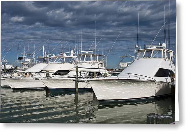 Yachts At The Dock Greeting Card