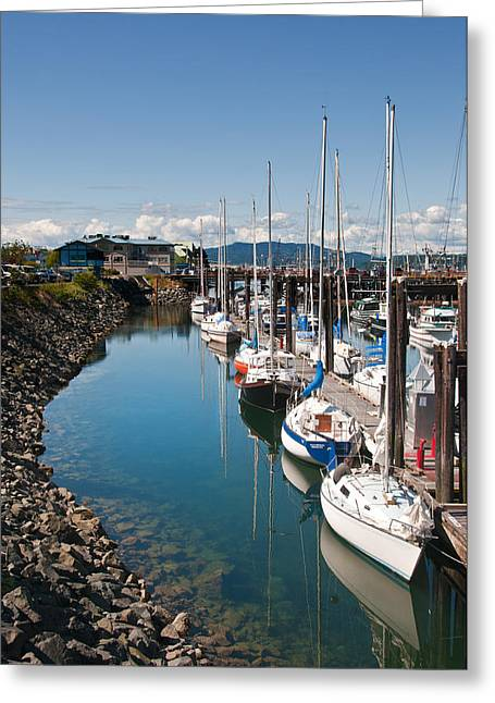 Yachts In The Marina Greeting Card by Melody Watson