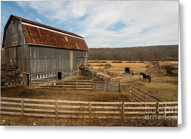 Yankee Farmlands No. 56 - Horse Farm In New England Greeting Card by JG Coleman