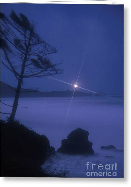 Yaquina Head At Night Greeting Card