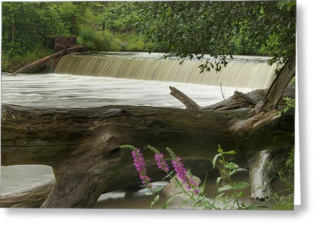Cider Mill Greeting Cards - Yates Dam Greeting Card by Michael Peychich