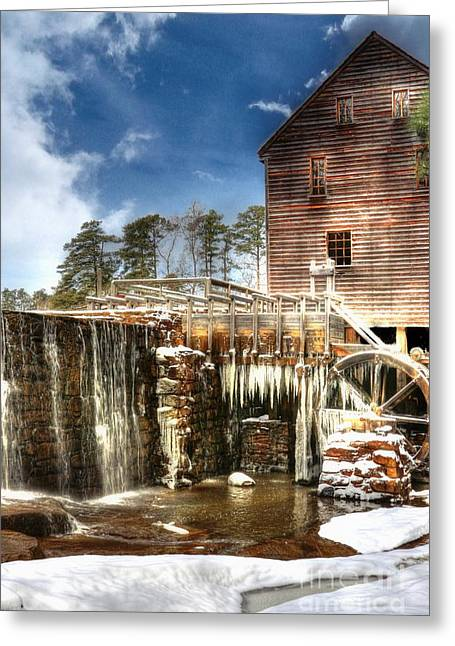 Yates Mill Pond Greeting Card by Benanne Stiens