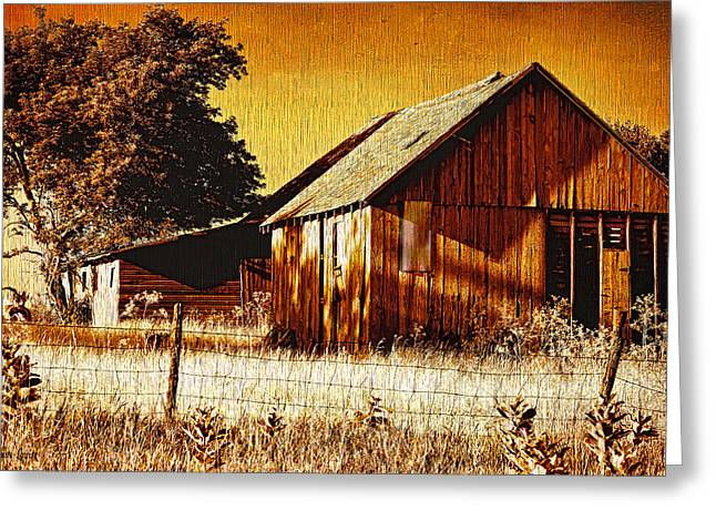 Ye Old Sepia Outbuildings Greeting Card by Anna Louise