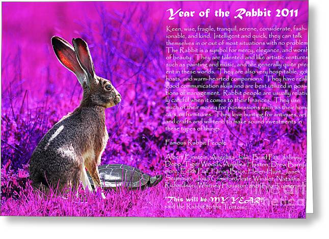 Year Of The Rabbit 2011 . Magenta Greeting Card by Wingsdomain Art and Photography