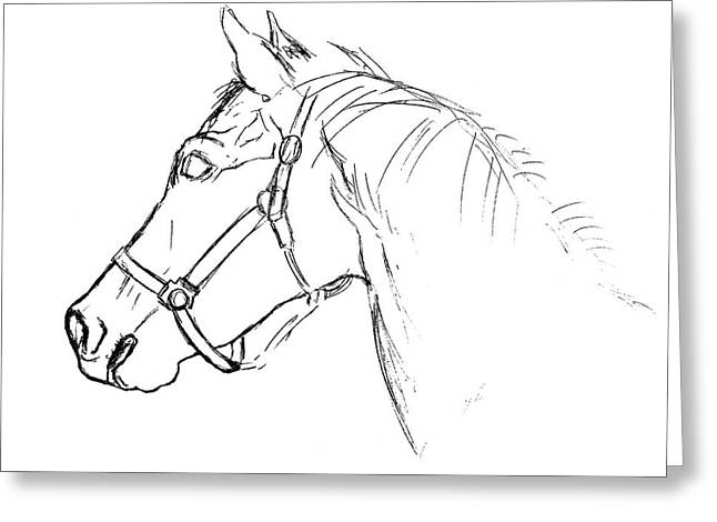 Yearling White Greeting Card by JAMART Photography