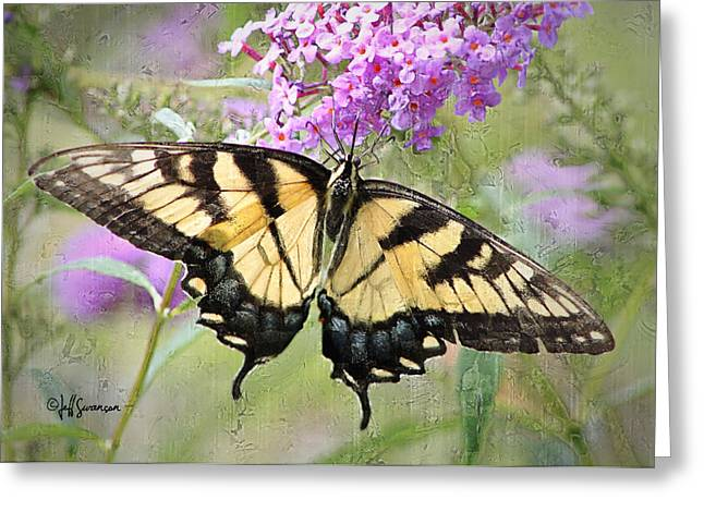 Yellow And Black Beauty Greeting Card