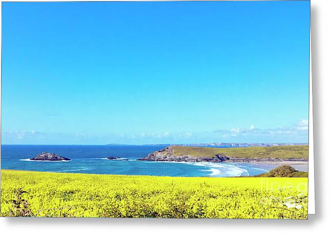 Yellow And Blue Greeting Card by Terri Waters