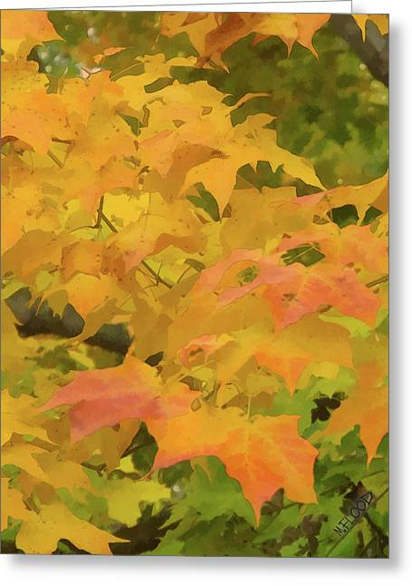 Greeting Card featuring the photograph Yellow And Green Fall Leaves by Michael Flood