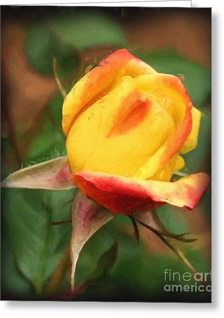 Yellow And Orange Rosebud Greeting Card by Smilin Eyes  Treasures