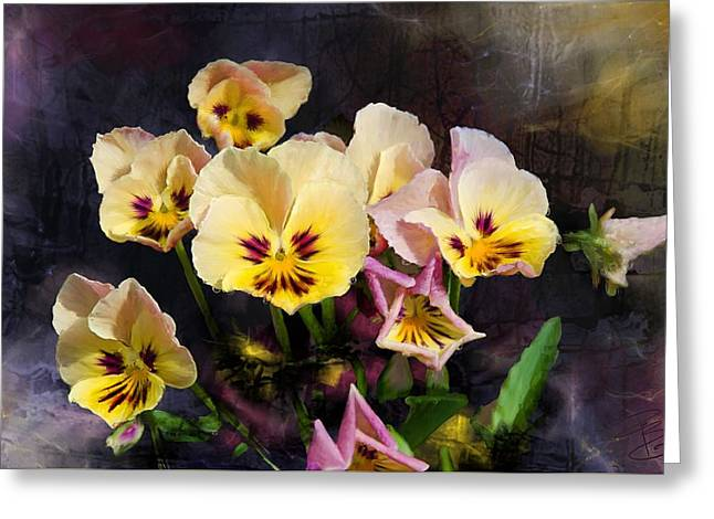 Yellow And Pink Pansies Greeting Card by Debra Baldwin