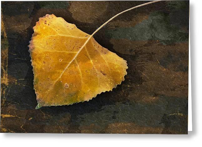 Yellow Autumn Leaf Greeting Card