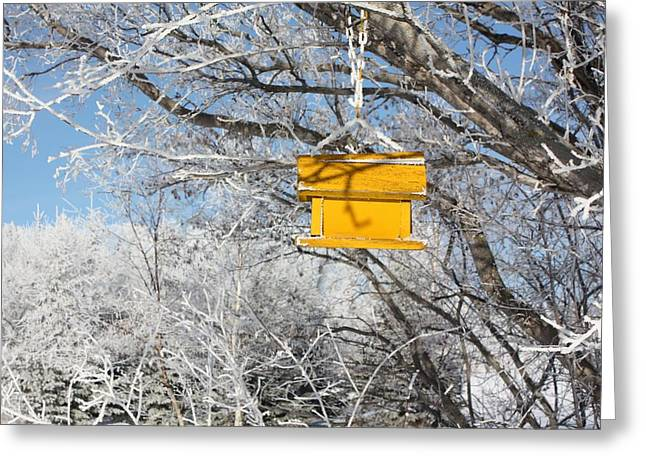 Yellow Bird House Greeting Card by Pat Purdy