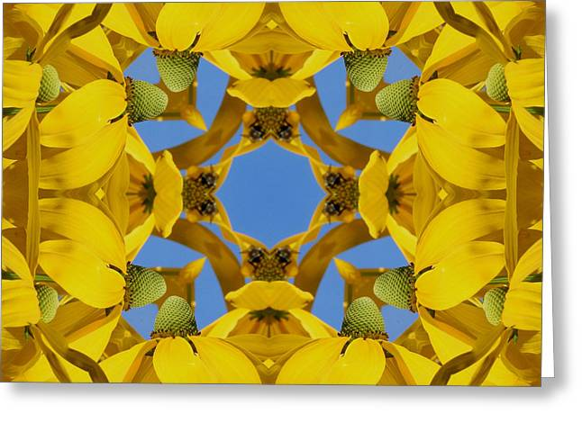 Yellow Coneflower Kaleidoscope Greeting Card