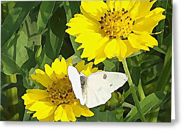 Yellow Cow Pen Daisies Greeting Card