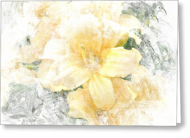 Yellow Daylily Greeting Card