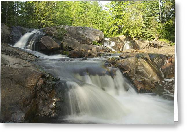 Yellow Dog Falls 3 Greeting Card by Michael Peychich