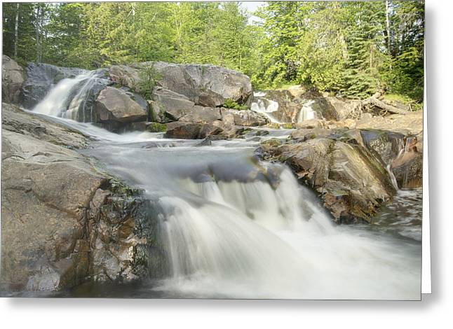 Yellow Dog Falls 4234 Greeting Card by Michael Peychich