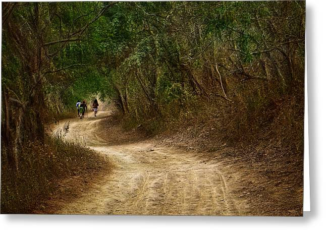 Yellow Dust Road Greeting Card by Cameron Wood