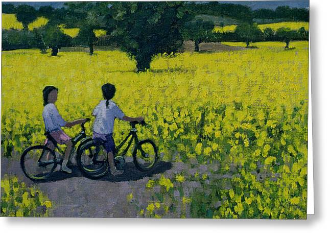 Bicycle Greeting Cards - Yellow Field Greeting Card by Andrew Macara
