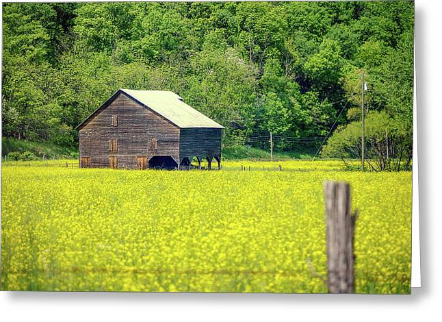 Yellow Field Rustic Shed Greeting Card