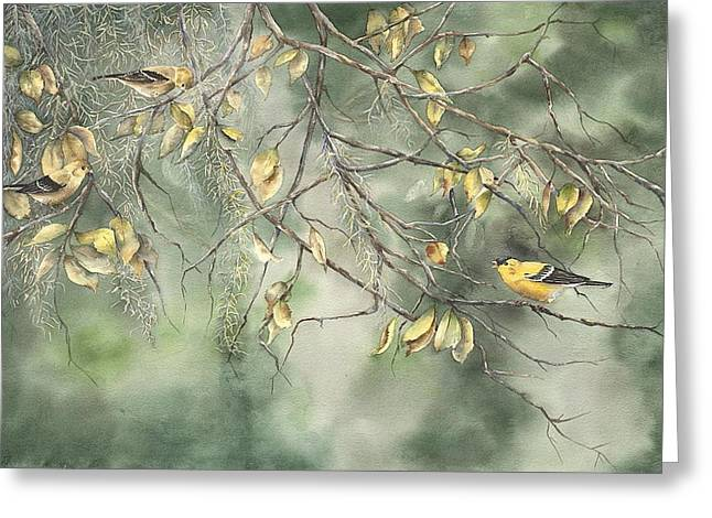 Yellow Finch Greeting Card by Mary McCullah