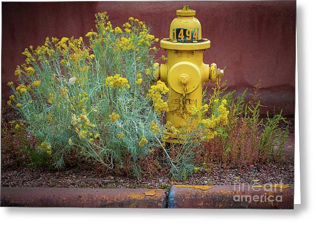 Yellow Fire Hydrant Greeting Card
