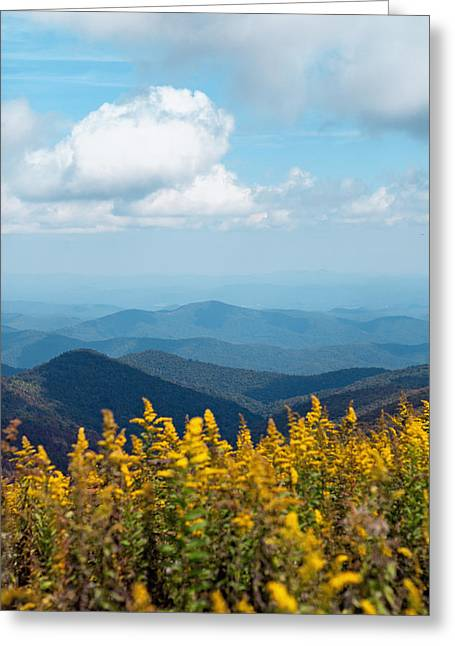 Greeting Card featuring the photograph Yellow Flowers Along The Blue Ridge Mountains by Kim Fearheiley
