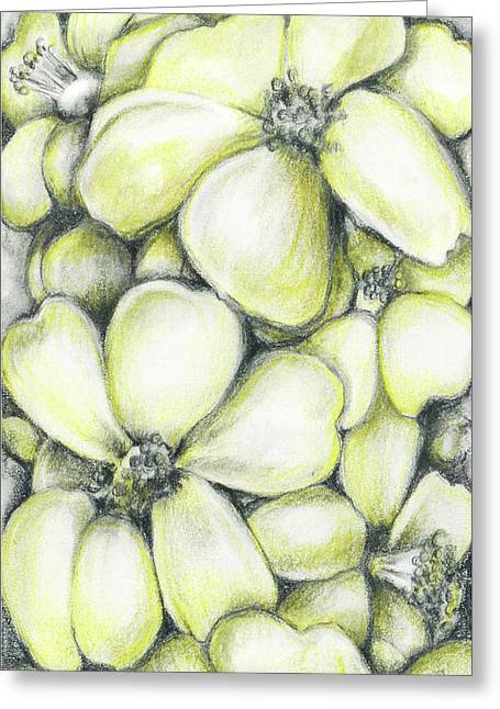 Yellow Flowers Pencil Greeting Card