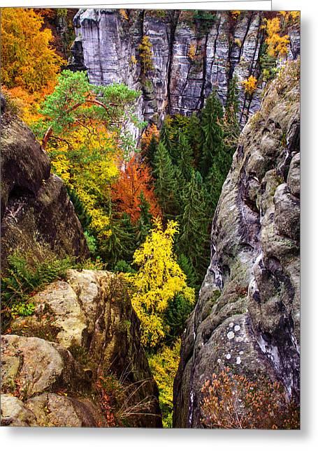 Yellow Glimpses. Saxon Switzerland Greeting Card