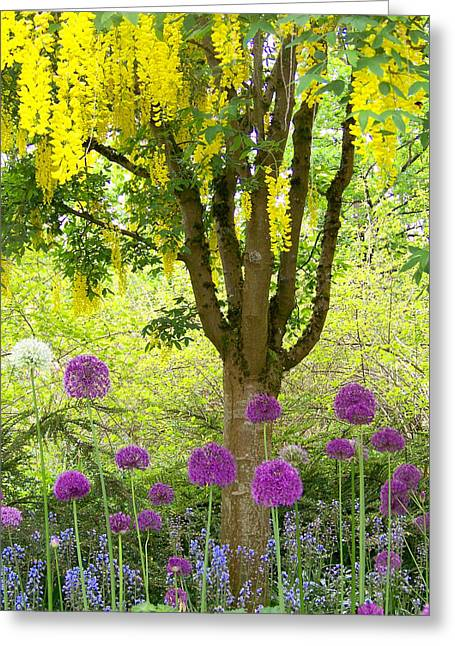 Yellow Hanging Hydrangea Tree Greeting Card by Elizabeth Thomas